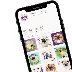 Diseño de Branding para PiggyDex. Logo, moodboard, brandboard, paleta de colores, tipografias y plantillas para Instagram - Sierra Graphics